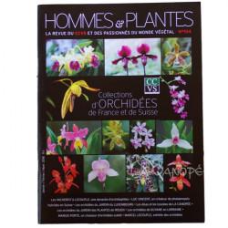 Revue CCVS spéciale Orchidées