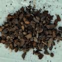 Substrat de culture Paphiopedilum, 4 litres