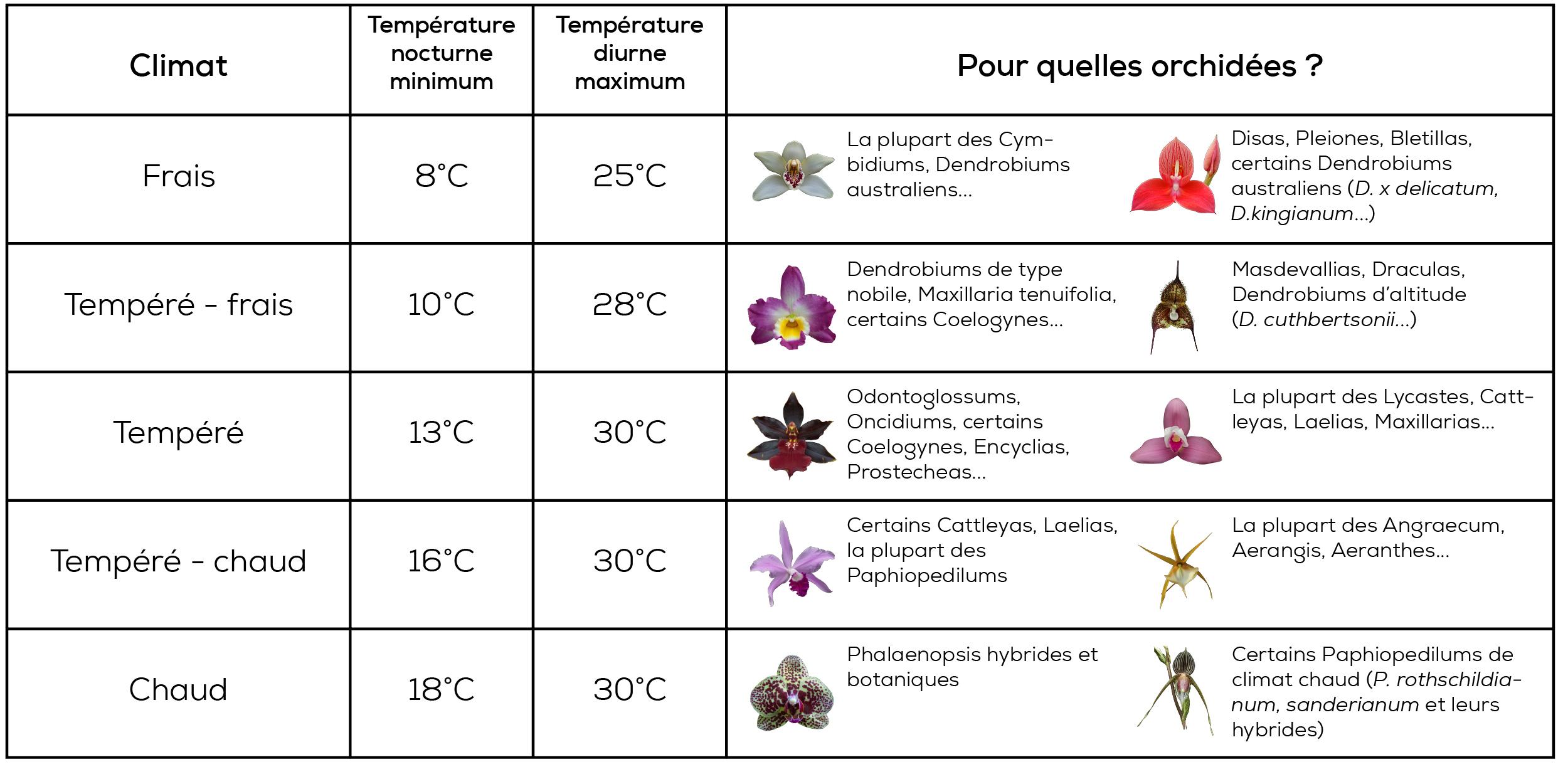 Les climats de culture des orchidées