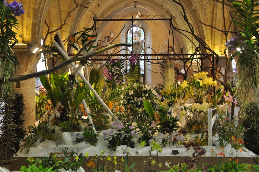 Abbaye de Vaucelles 2011