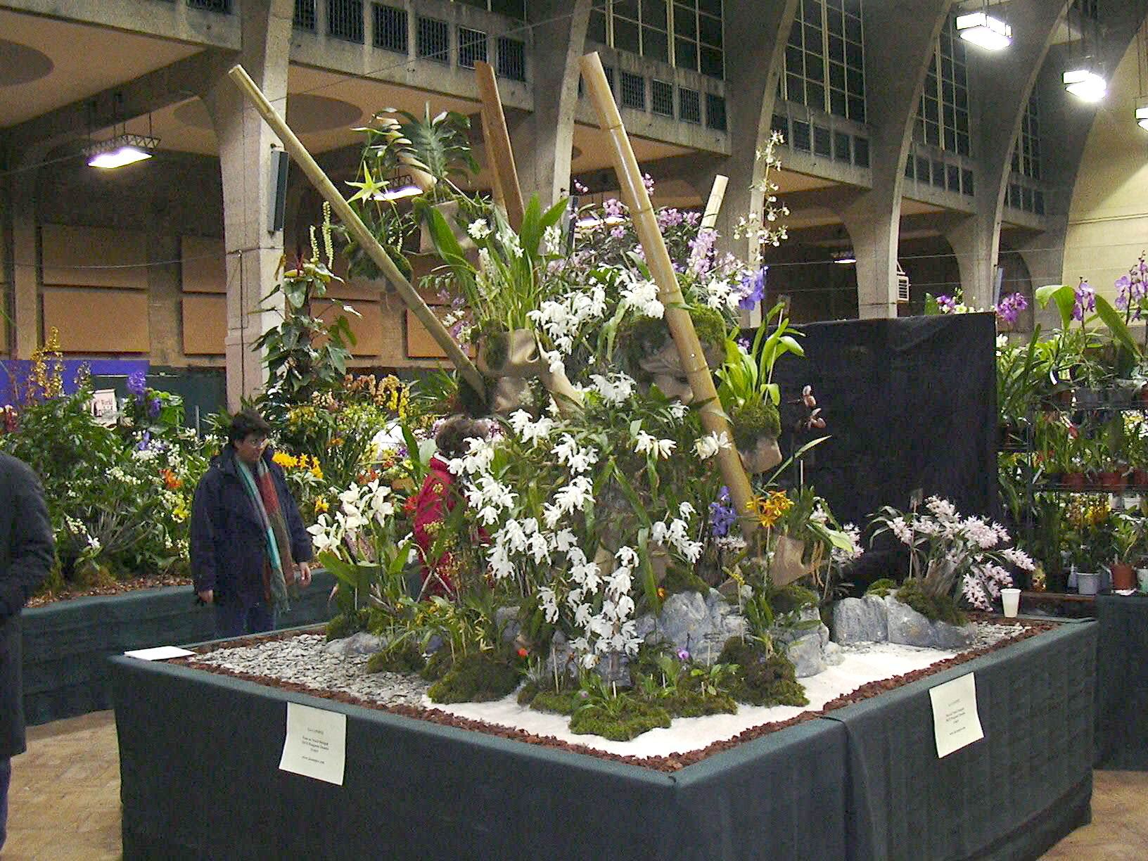 Décor London Orchid Show 2004